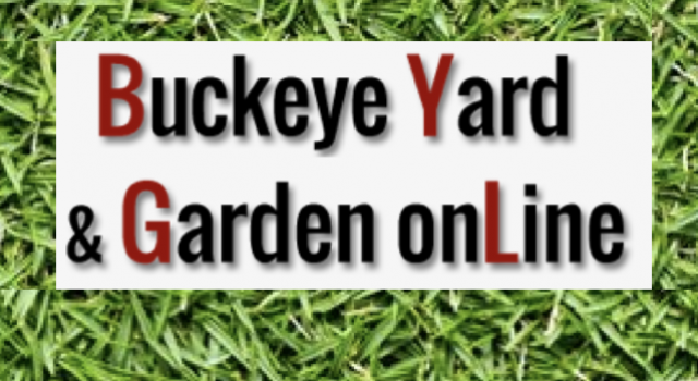 Buckeye Yard and Garden Online
